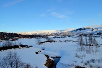 Myrdal photo1